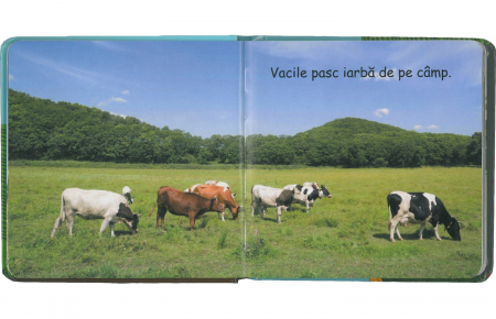LA FERMA - SET CU PUZZLE,CARTE, FIGURINE - joc educativ Didactica Publishing House [2]