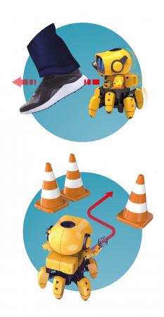 Robot Tibo [2]